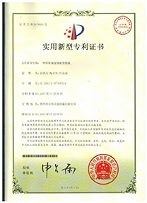 Certification for moulding dressing device