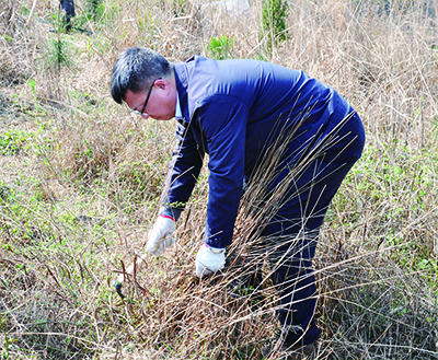 Guizhou Henfux organized tree planting activities